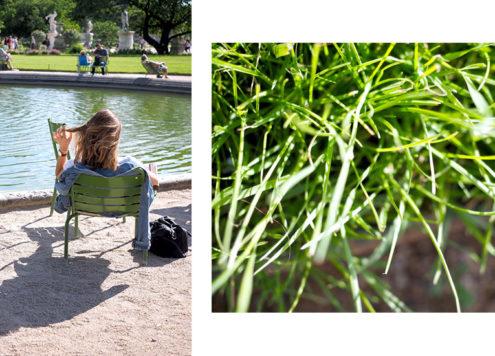 Réflexions au jardin des Tuileries