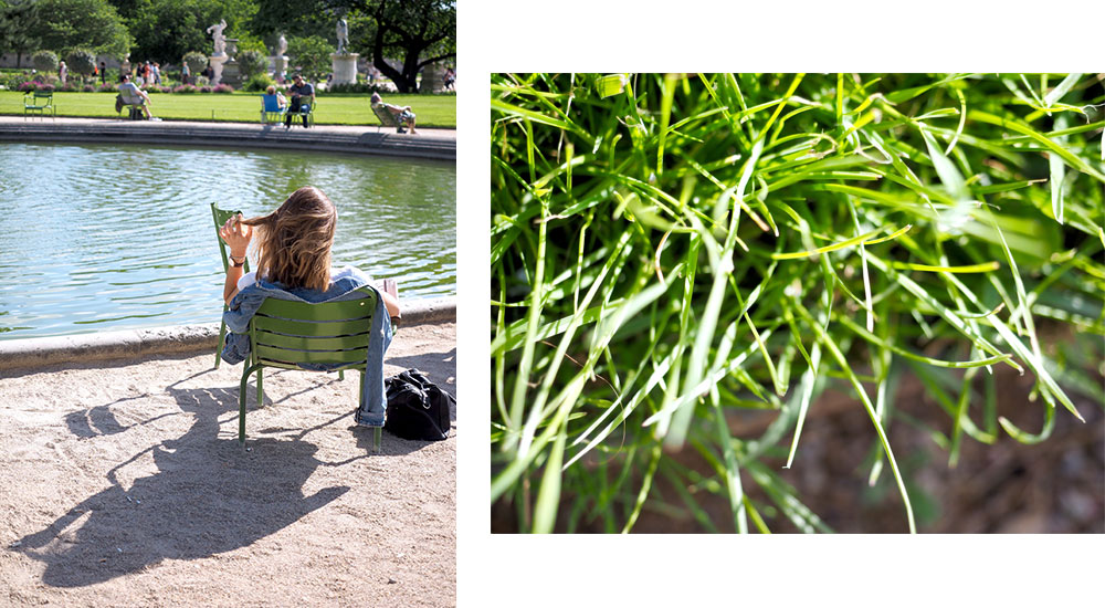 Thoughts in the Tuileries garden